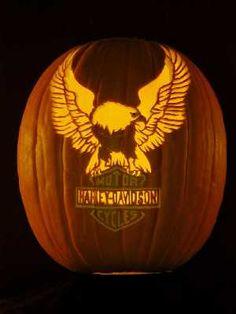 Upwing eagle always rocks!! Harley-Davidson of Long Branch www.hdlongbranch.com