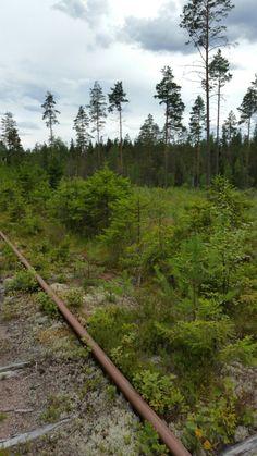 Sweden Holidays, Baseball, Baseball Promposals