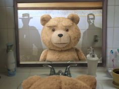 """""""  Looking in the mirror, I realize that I could be an awesome action movie star, because my range of expression is easily as limited as Clint Eastwood or Keanu Reeves."""" - #Ted"""