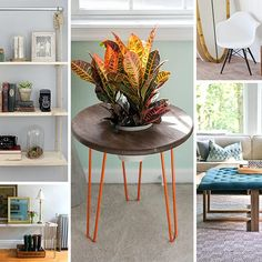 Find supplies for these furniture projects at a home improvement store.