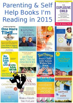 Parenting and Self Help books I'm reading in 2015: autisum, sensory needs, organizing, cleaning, talking to kids - 3Dinosaurs.com