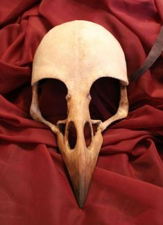 Crow/Raven Bird Skull Mask in 2019 Raven Bird, Crow Bird, Crow Skull, Skull Mask, Crane, Tatoo Brothers, Tatoo Bird, Bird Skull Tattoo, Raven Mask