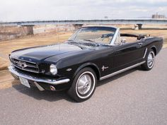 I want to buy this car, but my wife will not allow to buy.  フォード フォード マスタング CONV | 中古車 輸入車 GooWORLD(グーワールド) | 【株式会社ワイケーモーター】