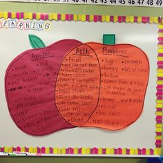 Comparing and contrasting apples and pumpkins!
