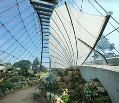 Image result for kew gardens alpine house