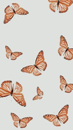 Butterfly Wallpaper Iphone, Iphone Background Wallpaper, Aesthetic Iphone Wallpaper, Aesthetic Wallpapers, Desktop Backgrounds, Wallpaper Desktop, Wallpaper Quotes, Macbook Wallpaper, Screen Wallpaper
