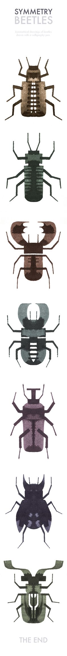 Symmetry Beetles on Behance