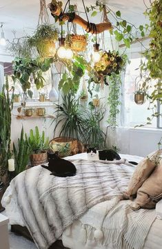 Heartleaf philodendron and snake plant houseplants in the bedroom Best Plants For Bedroom, Bedroom Plants Decor, Garden Bedroom, Room Ideas Bedroom, Dream Bedroom, Plants For Room, Bed Room, Living Room With Plants, Dorm Plants