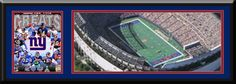 New York Giant MetLife Aerial View Large Stadium Poster With Team Photo