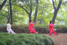 """""""Do not fear going forward slowly; fear only to stand still.""""                        - Chinese Proverb TAI CHI CROSSROADS BLOG:  - taichicrossroads.blogspot.com #TaiChi #Taijiquan"""