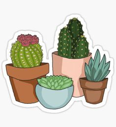 Happy Succulents Sticker