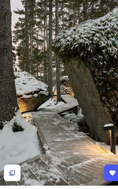 Forest Floor, Outside Living, Landscape Lighting, Car Parking, Bouldering, House Tours, Pond, Woodland, Remote