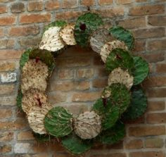 cactus wreath: holiday diy « HAUTE NATURE