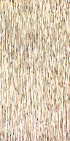 Pressed Glass | Organics | Gingko Thatch Pressed | Materials ...