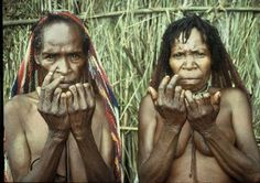 Women of Dani tribes cut their fingers every time they have deceased relatives. These tribes are different from Lani tribes and Yali tribes. Dani tribes are located Baliem Valley in Irian Jaya, West of Papua.