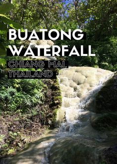 Thailand Travel Tips l The Bua Tong Sticky Waterfall in Chiang Mai, Thailand l @tbproject