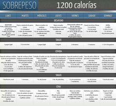 Dieta de 1200 kcal                                                                                                                                                      Más