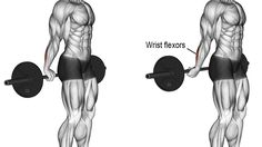 Behind-the-back barbell wrist curl exercise