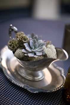 This silvery green succulent with the vintage silver is  an elegant combination.