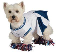 Deluxe Cheerleader X-Large Pet Costume - http://www.thepuppy.org/deluxe-cheerleader-x-large-pet-costume/