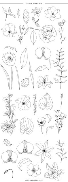 Blooming Garden Floral Patterns a set of Seamless Vector Patterns, Flower Illustrations and Vector Floral Compositions   created by line art hand drawings. A selection of hand drawn flowers in   elegant line work and a lovely blush/gold color palette that creates a   unique selection of seamless floral patterns.  All elements used in the set have been individually hand drawn then turned into vectors and combined into beautiful sets of Illustrator patterns! Line Art Flowers, Hand Drawn Flowers, Flower Art, Vector Pattern, Pattern Design, Design Design, Design Elements, Free Pattern, Motif Floral