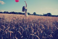 Balloons in the cornfield #photography