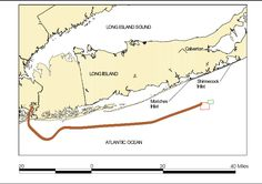 Twa 800 flight path. This Day in History: Jul 17 - 1996 - Flight 800 explodes