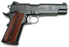 Springfield 1911 Professional - 45ACP....my next .45 handgun.