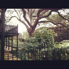 East Hall Street in Historic Savannah, GA
