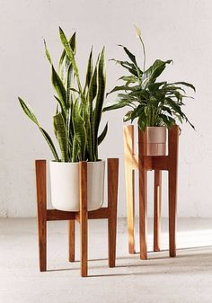 Minimalist wooden plant stands for small spaces