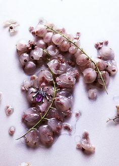 Marie Claire / 'Forbidden Fruits' / photographer: Peter Lippmann #stilllife #jewelry #objects