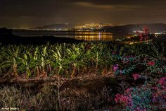 Sea of Galilee, Israel by Michael shmidt-Photographer Artist