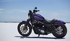 2014 Harley-Davidson® Sportster® Iron 883™ Motorcycles Photos & Videos - Got to love a Purple Harley!!