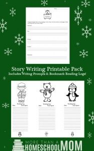 write an essay on winter season