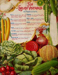 Vaughan's Seed Store 1897, back cover