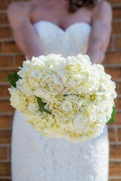 Photography & Graphic Design | Milwaukee, WI | Wedding Photography