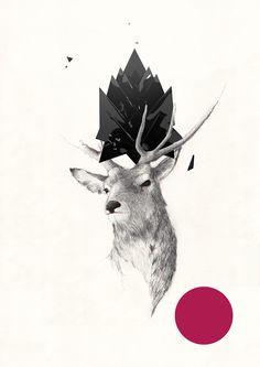 Stag Poster // Marcin Wolski