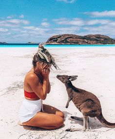 It's not everyday you get kissed by a kangaroo on a beach 😍💋🦘 ✧ Just wanted to say a HUGE thank you for the awesome response on our vlog… Tasmania Australia, Visit Australia, Australia Travel, Australia Pics, Esperance Australia, Australia Beach, Sydney Australia, Western Australia, Places To Travel
