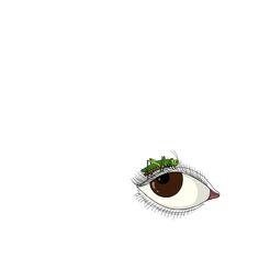 오른쪽 눈꺼풀 위에 메뚜기 한마리, 나흘째 동거 중. 툭툭툭툭...쉬지도 않고  계속 떤다. . . #눈꺼풀 #eyelid #눈꺼풀떨림 #blepharospasm #메뚜기 #grasshopper #drawing #scribbling #illustration