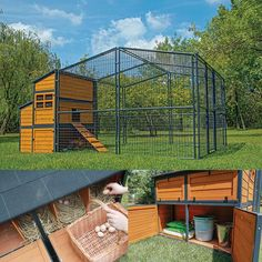 Defender Chicken Coop with attached run for 12 chickens -- 10 ft. x 10 ft. run with strong steel mesh roof for protection, 5 nesting boxes and 4 large capacity roosting bars --  very sturdy, protects against raccoons and other predators well! The chickens are happy! They love the big open run.