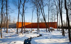 A House In The Woods by William Reue Architecture (1)