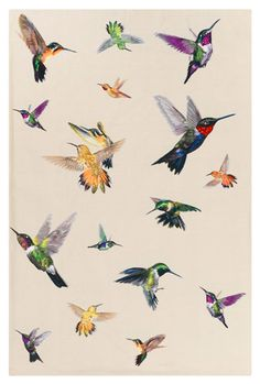 Hummingbird Ivory by Alexander McQueen | Cashmere and Silk with Cashmere backing #Rug