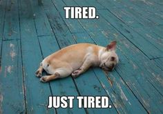 Tired...but seriously