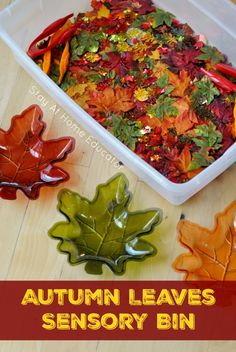 Autumn Leaves Sensory Bin