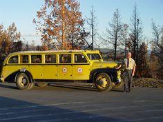 Historic Yellowstone Bus