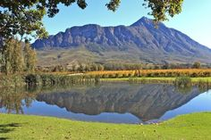 Nestled in the Tulbagh Valley, learn about modern winery Saronsberg Cellar's award-winning wines and accommodation. Saronsberg has established itself as one of SA's leading producers of Shiraz. Places To Travel, Places To See, Local Attractions, Cellar, Campsite, Cape Town, South Africa, Travel Inspiration, Beautiful Places
