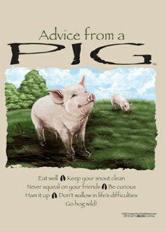 Pig T shirt Gildan Advice Cotton Unisex S M L XL 2XL NWT NEW Farm Bacon Pork Fun