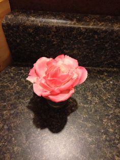 My first rose from gum paste