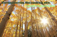 """Everything is Everything. What is meant to be, will be."""" - Lauryn Hill"""