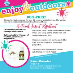 Summertime Fun with Essential Oils DIY Recipes - Karen Renee Knowles